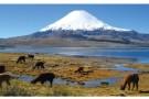 Letak_stipendium_Chile