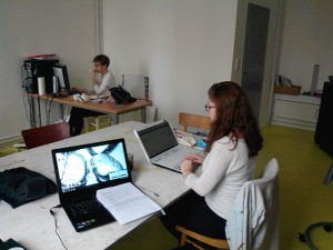 Mladiinfo kancelář