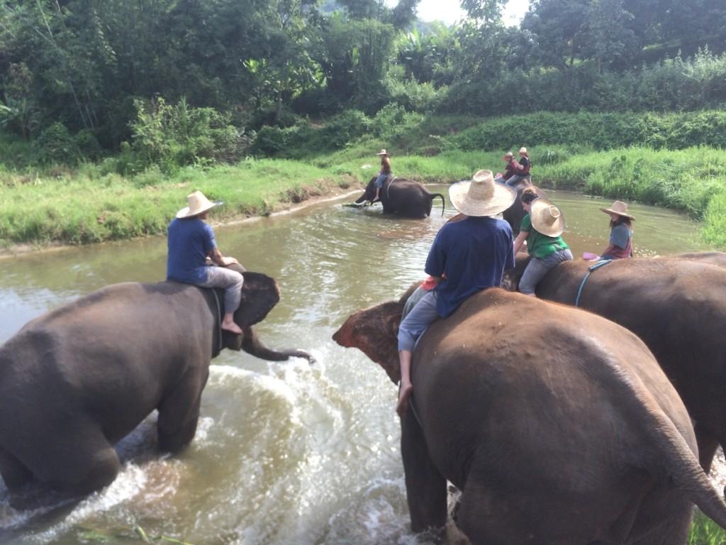 Thajsko riding bathing elephants