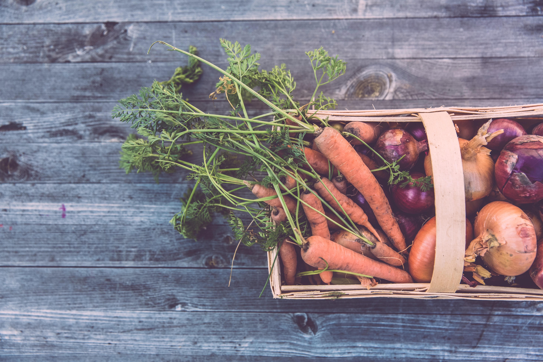 Bedýnka zeleniny vypěstovaná na ekologické farmě