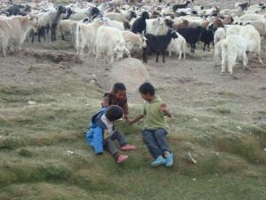 Děti_tibetských_nomádů_Ladak_Indie_2011