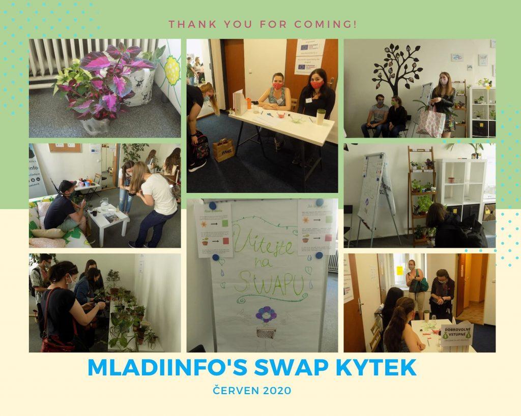 volunteering experience in Brno