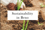 Sustainability in Brno